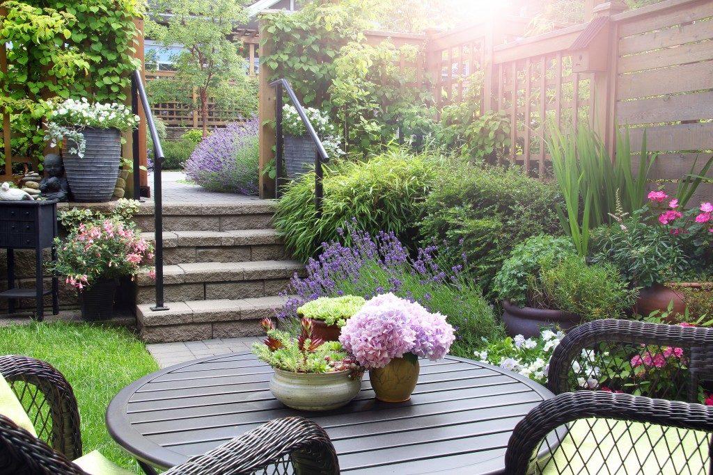 garden patio in a house