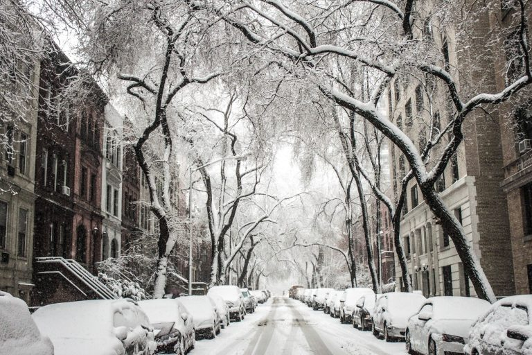 parked cars during winter